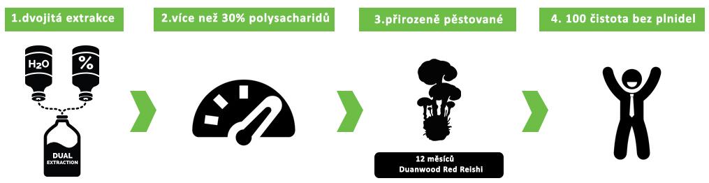 medicinální-houby-jak-vybrat-správný-produkt