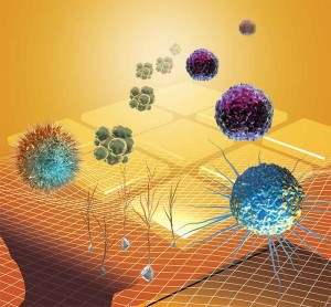 rôzne druhy buniek vírusov