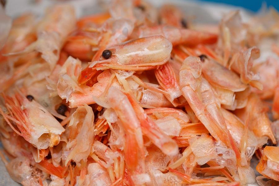 Chitosan - lúpané krevety - herbár Superionherbs