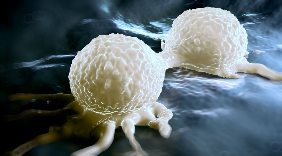 rakovina-bunka-deliaca