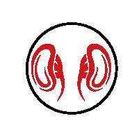 reishi-obličky