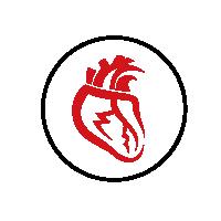 reishi-srdce