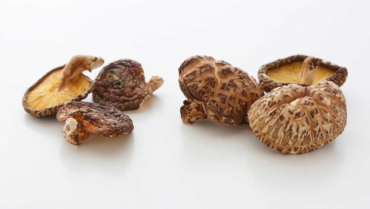 shiitake-houby