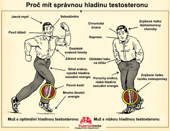 testosterón